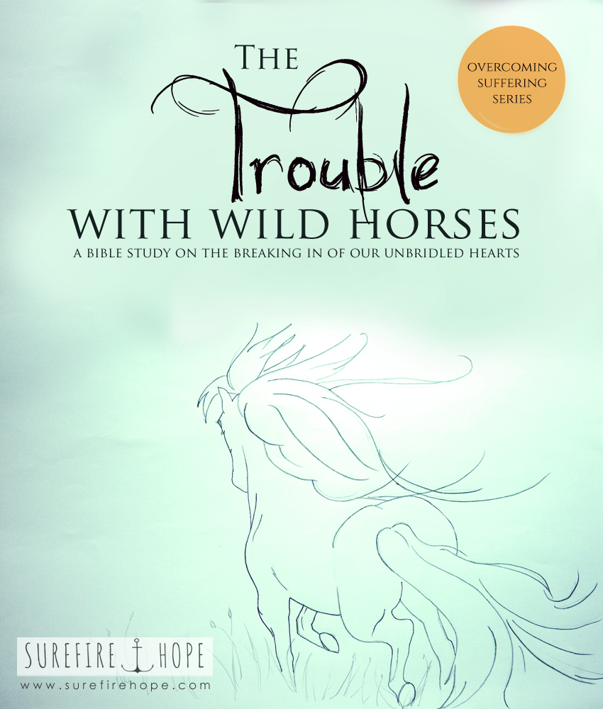 The Trouble with Wild Horses - the breaking in of our unbridled hearts - Surefire Hope Bible Study Blog - Overcoming Suffering Series